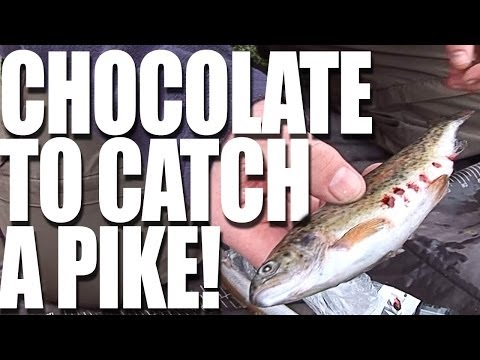 Advanced Pike Attractants