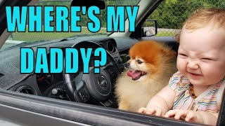 WHERE MY DADDY?? LOOKING for BABY JADES DAD w/ LITTLE BEAR!