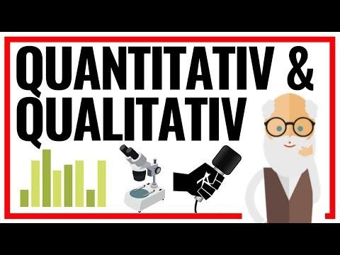Quantitativ und Qualitativ   5 Unterschiede der besten empirischen Forschungsmethoden