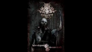 After Dark I Bleed - My Vendetta