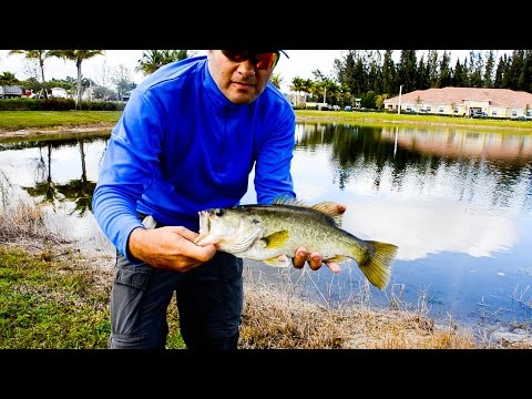 South Florida – Bass Fishing with my Favorite Thrasher Lures – HD Video # 79