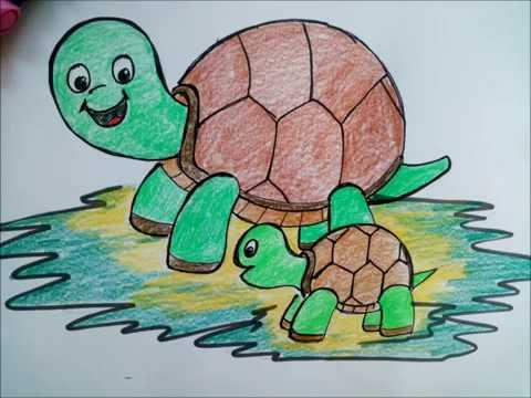 Nasıl Bir Kaplumbağa çizmek Için смотреть онлайн на Hahlife