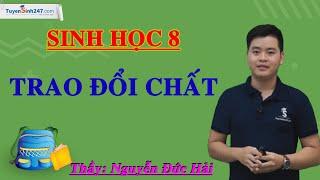 Trao đổi chất – Sinh học 8 – Thầy Nguyễn Đức Hải