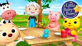 Nursery Rhyme Videos!   Food Songs!   Compilation from LittleBabyBum!   Live Stream!