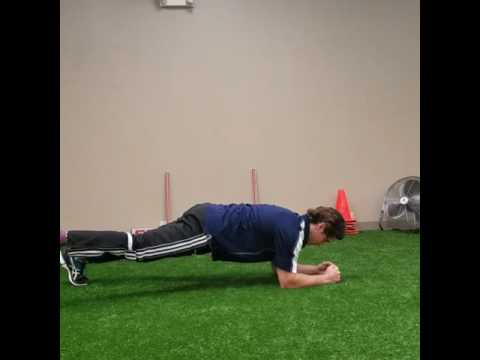 Wide-Stance Plank with Leg Lift