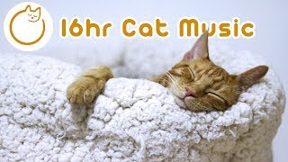 EXTRA LONG Cat Relaxation Music! New 2019🐈