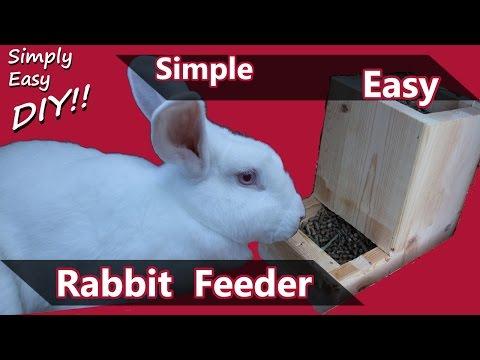 , title : 'DIY Rabbit Feeder