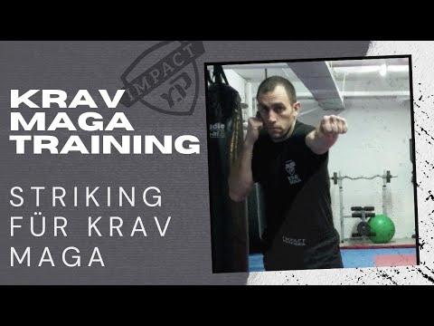 60 Minuten Krav Maga Online Training - Striking für Krav Maga, Striking für Selbstverteidigung