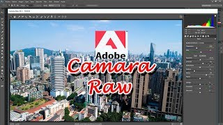 Descargar e Instalar Camara Raw 10.1