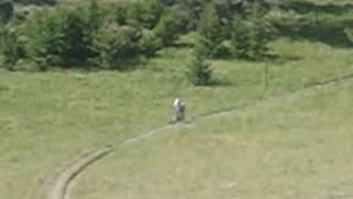 Mountain Biking Bang Tail Divide Trail,  Bozeman, Montana