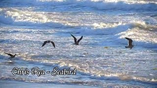 Chris Rea - Seabird