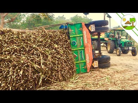 Tractor Accident With Sugarcane Load / Swaraj 744 And Mahindra Arjun 555 - Come To Village