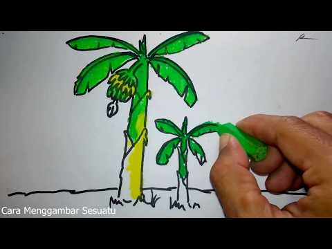 Cara Menggambar Dan Mewarnai Pohon Untuk Anak Deffi Gracioso