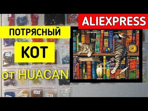 Потрясающий КОТ на КНИГАХ от Huacan / Алмазная Мозаика // Elena Pero