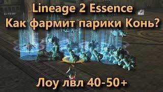 Как качается конь в Lineage 2 Essence Lineage II Aden на 40+ в круме на париках. Фарм массухой крума