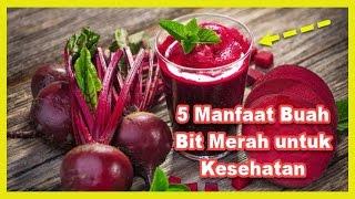 HEBAT 5 Manfaat Buah Bit Merah Dalam FIFORLIF Berkhasiat Untuk Kesehatan