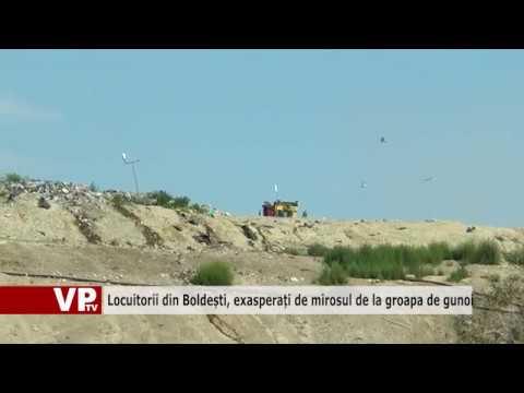Locuitorii din Boldești, exasperați de mirosul de la groapa de gunoi