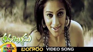 Pravarakyudu Telugu Movie Songs | Bangaram Video Song | Jagapathi Babu | Priyamani | Mango Music
