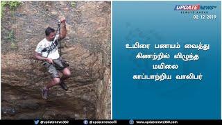 உயிரை பணயம் வைத்து மயிலை காப்பாற்றிய வாலிபர் | Update news 360