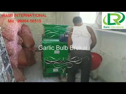 Garlic Bulb Cutting Machine
