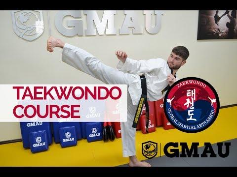 Global Online Taekwondo Course - Learn and Earn Accredited ...