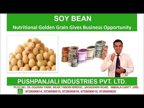 Soyabean Food Making Machine