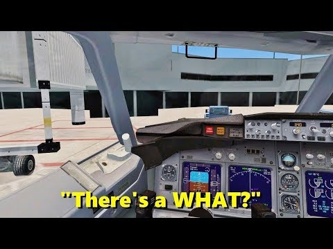 When you take Flight Simulator just a little bit too seriously