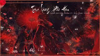 [ VIETSUB ] Trục Lãng Phi Hoa - Nhị Thẩm ft. Ếch Lang Thang ll 逐浪飞花 - 贰婶 ft. 流浪的蛙蛙