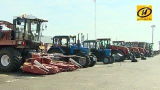 Александр Лукашенко потребовал навести железный порядок в сельском хозяйстве
