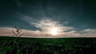 Cahokia - Demise