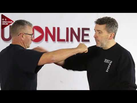 WingChun Online Part 1 What Is Wing Chun?