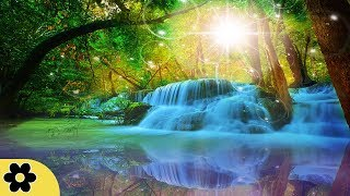 Healing Meditation Music, Relaxing Music, Music for Stress Relief, Background Music, ✿3230C