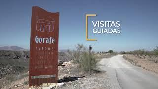 Video del alojamiento Cuevas El Torriblanco