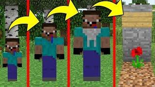 NOOB'UN HAYATI! - Minecraft