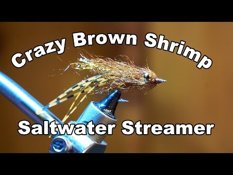 Crazy Brown Shrimp
