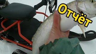 Отчет с зимней рыбалки на Галичском озере
