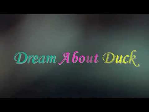 What Does It Mean When You Dream About  Duck