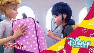 Las aventuras de Ladybug en Nueva York: Avance exclusivo | Disney Channel Oficial