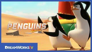 Penguins of Madagascar (2014) Video