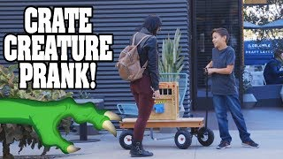 Crate Creatures™ Surprise Fart In Public Prank!