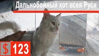 $123 Скания S500 В Татарстане следят за дорогами!!! Познакомились с Барсиком)))