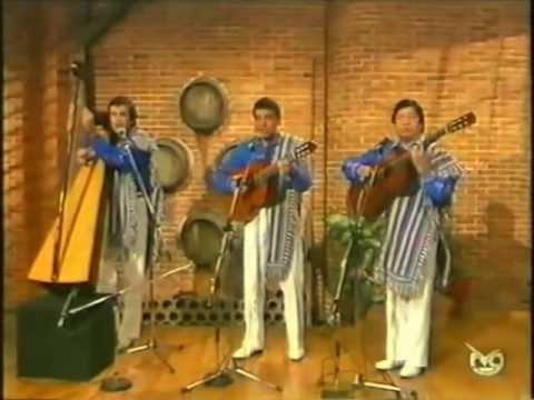 El pajaro chogui.  Los Tres Soles del Paraguay