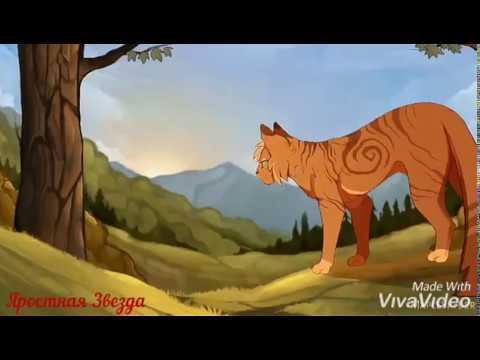 Коты-Воители - Whatever it takes