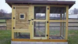The Best Chicken Coop - Wichita Cabin Coop