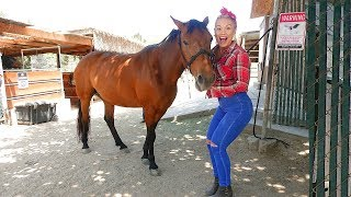 SURPRISING SOPHIA WITH A PET HORSE!!!