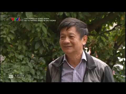 Hà Tu những bước đi ấn tượng kênh VTV1 ngày 03/12/2019