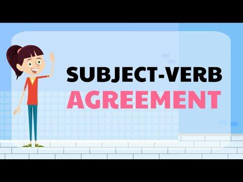 Subject Verb Agreement (singular and plural noun + action verb)