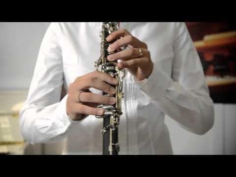 Il Clarinetto da Studio Yamaha