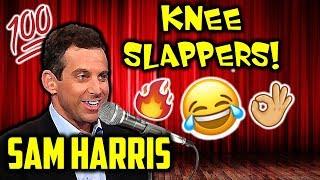Those Times Sam Harris Made Us Slap Our Knees