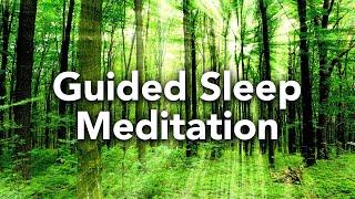 Geführte Schlafmeditation, Anleitung und Unterstützung der Schlafmeditation